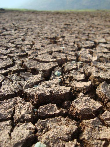 Contaminación tierra seca