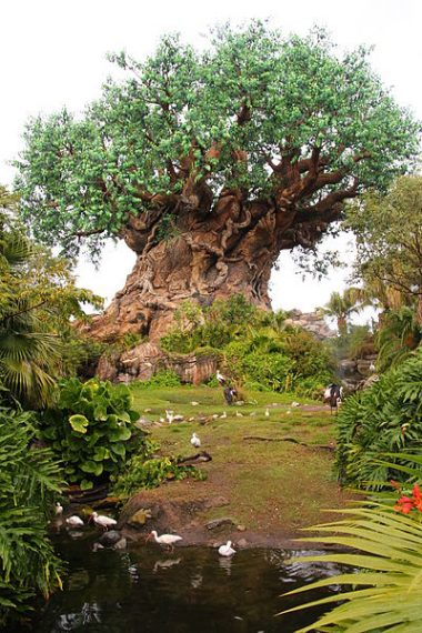 Árbol de la Vida en Animal Kingdom